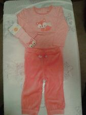 NWT GYMBOREE BRAND NEW BABY FOX BODY SUIT VELOUR PANTS SOCKS OUTFIT 12-18 MONTHS
