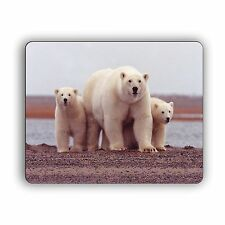 Polar Bears Mom with Cubs Mouse Pad For Home and Office
