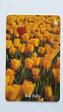 SINGAPORE PHONE CARD RED YELLOW TULIP FLOWER #1
