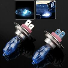 HOD H7 Halogen Bulb, Super White Car Headlight Bulb, 12 V / 100W, 6000K (Pair)