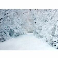 7X5FT Vinyl Winter Ice Snow Tree Photography Backdrop Background Studio Props