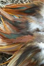 50+ ROOSTER NATURAL FURNACE SADDLE HACKLE FEATHERS 5-7""