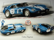 Ac cobra daytona coupé magic shelby 1964 1965 ferrari batteur bob bondurant enna