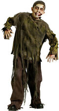 Boys Dark Zombie Halloween Complete Costume UnDead Pretend Play Small (6) Scary