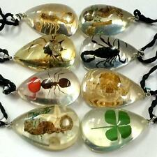 16 Pendant Real Mixed Insect Clover Taxidermy Lucid Drop Resin Jewelry
