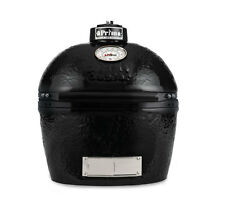 Primo JR200 BBQ Smoker Bake Grill Ceramic Lump Coal Outdoor Cooking