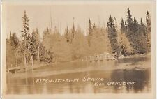 Michigan Mich RPPC Postcard c1930s near MANISTIQUE Kitch-iti-ki-pi Spring