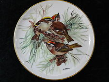 Alt Tirschenreuth Collectors Plate - View of the Common Firecrest Bird