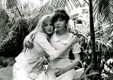 ARIELLE DOMBASLE ROSETTE CHASSE CROISE 1981 PHOTO ANCIENNE ARGENTIQUE N°7