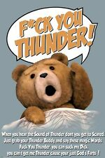 TED MOVIE POSTER ~ SOUND OF THUNDER JUST GOD'S FARTS 24x36 Seth MacFarlane Buddy