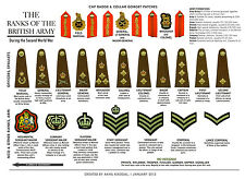 A3 Poster - The Ranks of the British Army (Military Picture Print Art Navy RAF)