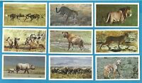 Players Grandee cigar / cigarette cards - AFRICAN WILDLIFE - 1990 Full VG Set
