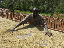 5 lbs Ethiopian Natural Sidamo Grade 4 Guji Unroasted Green Coffee Beans
