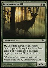 Dawntreader Elk X4 EX/NM Dark Ascension MTG Magic Green Common
