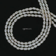 "High Luster Freshwater Pearl Tiny Rice Oval Seed Beads ap.2mm 15.5"" #66297"