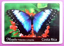 SWAP CARD. EMPEROR BLUE BUTTERFLY COSTA RICA. MORPHO PELEIDES LIMPIDA. WIDE.MINT