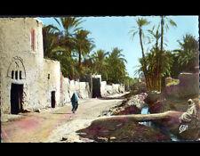 BISKRA (ALGERIE) VILLAS animée à l'OASIS BAB-DARB