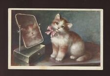 Animals CAT with mirror Artist early PPC