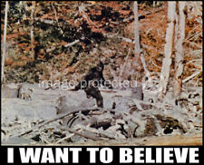 11x17 Poster of BIG FOOT ( I Want To Believe) Sasquatch Famous