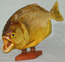 "Real Dried Piranha Fish Mount Taxidermy Specimen~8""-9""~Complete Set Of Teeth"