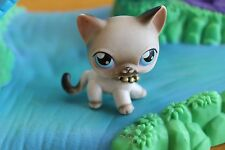 Littlest Pet Shop  Sonderfigur  5