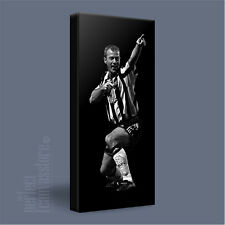 ALAN SHEARER ICONIC CANVAS POP ART PRINT PICTURE NEWCASTLE UNITED - Art Williams