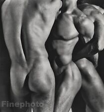 1986 Vintage MALE NUDE Torso 3 Men Body Butt Physique LARGE Photo Art HERB RITTS