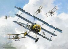 Fokker Dr.I Triplane Werner Voss WWI Plane Aviation Aircraft Painting Art Print