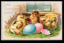 c1908 Tuck embossed Chicks Loving Easter greetings postcard
