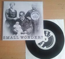 The Carpettes - Small Wonder? / 2Ne1 (Limited Edition 116/464) 7""