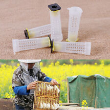 5x Beekeeping Rearing Cup Holder Kit Queen Bee Cages Protective Equipment Tools