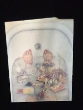 """Frida Kahlo """"What The Water Gave Me"""" Mexican Magic Realism 35mm Slide"""