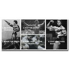 ARNOLD SCHWARZENEGGER - Bodybuilding Motivational Silk Poster 24x50 inch