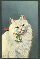 LC150 WHITE CAT KITTEN CHAT KATZE TREFLE FOUR LEAF CLOVER