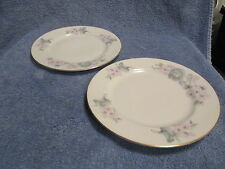 EPIAG china  5082  Dessert  Salad Plate Set of 2 Pink and Gray Quite Nice