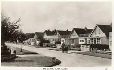 The Layne Elmer Sands Nr Bognor Regis Middleton on Sea unused RP old pc Evelyn