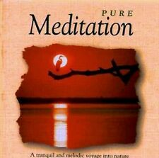 the global vision projekt, pure meditation