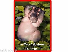 Funny Hippopotamus  Refrigerator / Tool Box Magnet Gift Card Insert