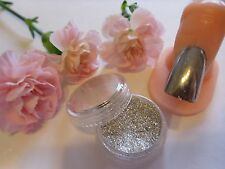 Nail Art Chrome Mirror Effect Glitter Powder Dust Mix 3g Pot Tip Nail Decoration