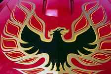 Metal Sign 778071 Pontiac Trans Am Screaming Eagle Hood A4 12X8 Aluminium