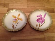 2 Stunning Handpainted Cabinet Plates ( Flowers ) by G D & Co Limoges France.
