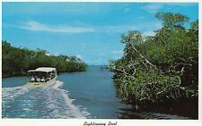 America Postcard - Sightseeing Boat - Whitewater Bay - Everglades Florida  A9991