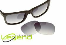 B1 Gray Gradient POLARIZED Replacement Lenses for Ray-Ban JUSTIN 54mm RB4165