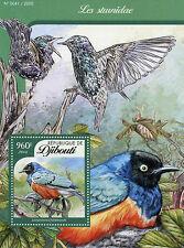 Djibouti 2016 MNH Starlings 1v S/S Birds Sturnidae Hildebrandt's Starling