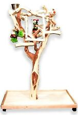 Manzanita Parrot Tree Bird Stand Toy Play Gym like Java Wood Sandblasted SB51L3