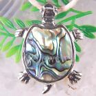 Natural New Zealand Abalone Shell Turtle Pendant Bead Gemstone 1Pcs TK1121