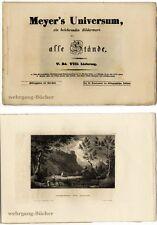 Meyer's Universum: V. Bd., VIII. Lieferung. Mit 4 Stahlstichtafeln von 1838