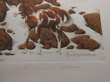 ' Hide and Seek ' by Bev Doolittle Signed & Numbered w/ Papers LARGE PRINT
