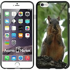 Squirrel Eating A Nut For Iphone 6 Plus 5.5 Inch Case Cover By Atomic Market