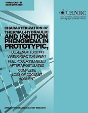 Characterization of Thermal-Hydraulic and Ignition Phenomena in Prototypic,...